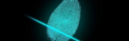 Moderne Video-Identifikation: Schlüsseltechnologie für den Alltag von Verbrauchern